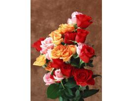 Flowers#100