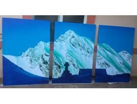 canvas 3 bucati